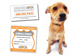 ASPCA Pet Safety ID Pack