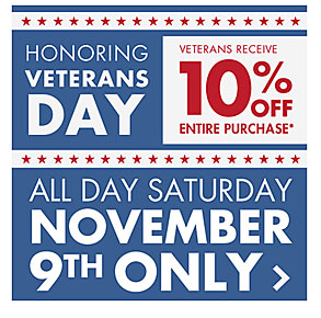 Veterans Day Big Lots Deals